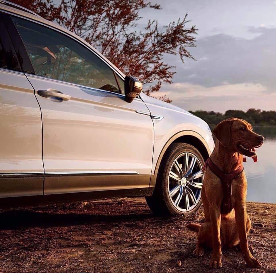 Bán xe Volkswagen Tiguan Allspace 2019 SUV 7 màu trắng nhãn hiệu Đức - hotline: 0909717983