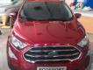 Em gái bán Xe Ford EcoSport 2020 giá cạnh tranh hấp dẫn