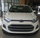 Ford Ecosport xe cực hot, đủ màu, hỗ trợ vay vốn 80%, giao xe toàn quốc giá 615 triệu tại Tp.HCM