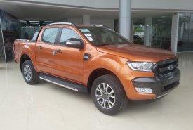 Xe Ford Ranger Wiltrak 2.2 AT 4x2 số tự động, Hỗ trợ trả góp và bán xe tại Điện Biên giá 799 triệu tại Điện Biên