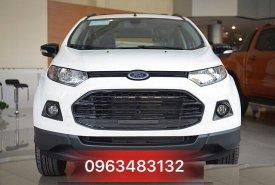 An Đô Ford - Bán Ford Ecosport SVP Black Titanium Màu Trắng - Giao xe ngay, Hỗ trợ trả góp giá 585 triệu tại Hà Nội