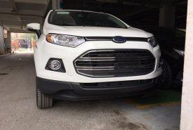 An Đô Ford - Bán Ford Ecosport Titanium đời 2018, mới 100%, Hỗ trợ trả góp giá 575 triệu tại Lào Cai