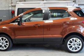 Bán ô tô Ford EcoSport 1.0 Ecoboost Titanium+ 2018, màu nâu, giá 689tr giá 689 triệu tại Tp.HCM