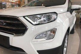 Bán xe Ford EcoSport Titanium 1.5L AT 2019, đủ màu sắc, xe giao ngay, giá cực tốt, LH ngay: 091.888.9278 giá 630 triệu tại Tp.HCM