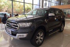Ford Everest  nhập khẩu mới 100%, trả trước 20% giá 799 triệu tại Đồng Tháp