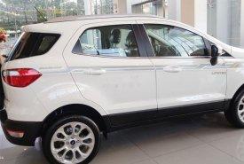 Bán Ford EcoSport năm sản xuất 2019, màu trắng giá cạnh tranh giá 613 triệu tại Tp.HCM