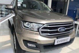 Bán Ford Everest năm 2019, màu vàng, nhập khẩu   giá 899 triệu tại Bình Dương