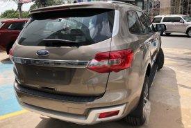 Cần bán Ford Everest sản xuất năm 2019, nhập khẩu nguyên chiếc giá 1 tỷ 157 tr tại Tp.HCM