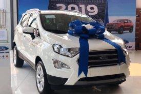 Bán xe Ford Ecosport sản xuất năm 2019, mới 100% giá 510 triệu tại Tp.HCM
