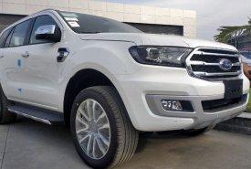 Bán xe Ford Everest Titanium mẫu 2020, màu trắng, nhập khẩu chính hãng giá 1 tỷ 181 tr tại Tp.HCM