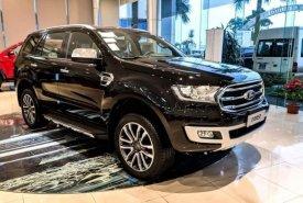 Cần bán Ford Everest Bi-turbo sản xuất 2019, nhập khẩu nguyên chiếc giá 1 tỷ 260 tr tại Tp.HCM